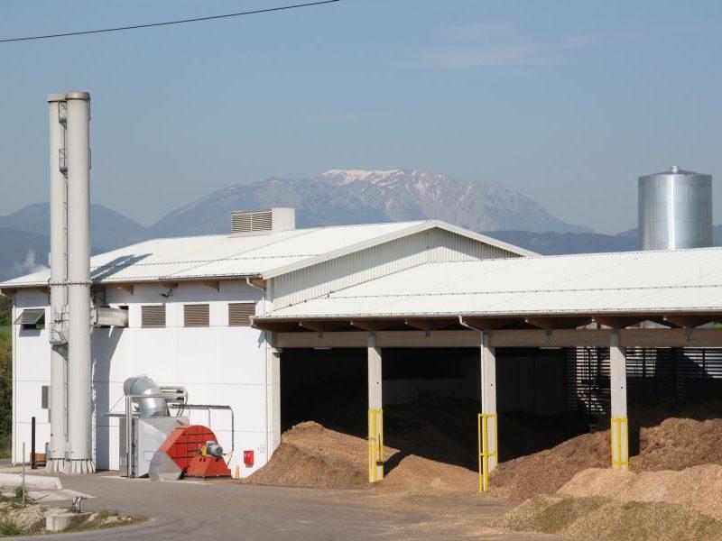 Biomasse-HKW in Schwarzau am Steinfeld